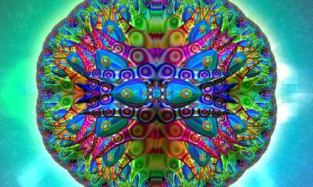 John Marco Allegro – vypadá to na houby…